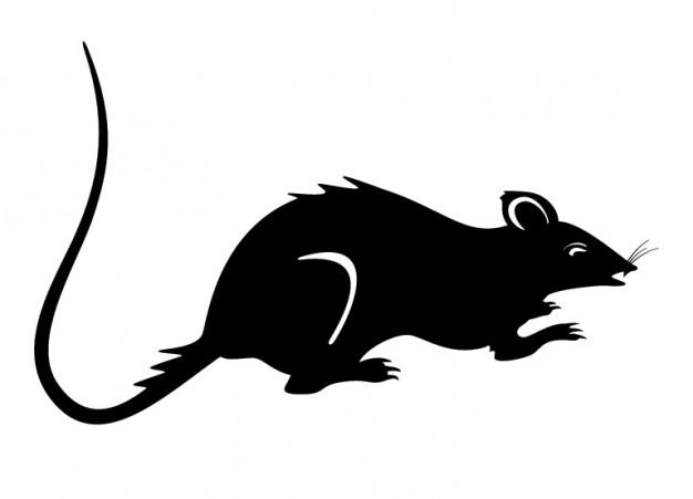 626x451 Rat Silhouette Black Mouse Vector Vector Free Download
