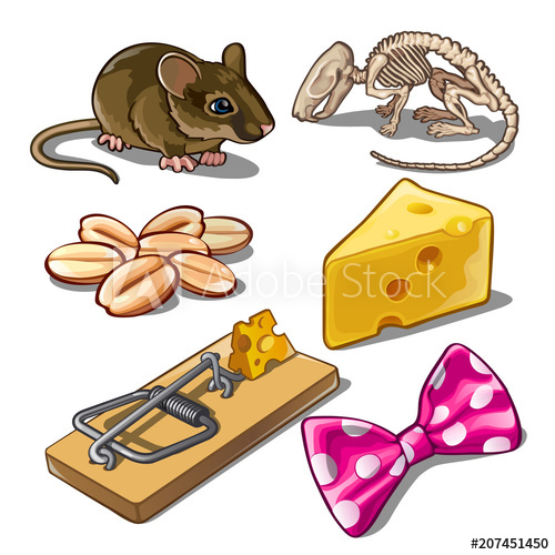 500x500 The Set Of Objects On The Subject Of Catching Mice. Vector