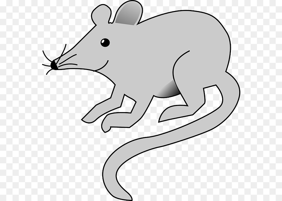 900x640 Computer Mouse Scalable Vector Graphics Clip Art