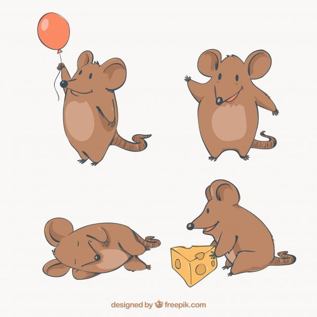 626x626 Flat Mice Collection With Different Poses Vector Free Download