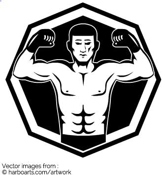 335x355 Download Mma Fighter Octagon