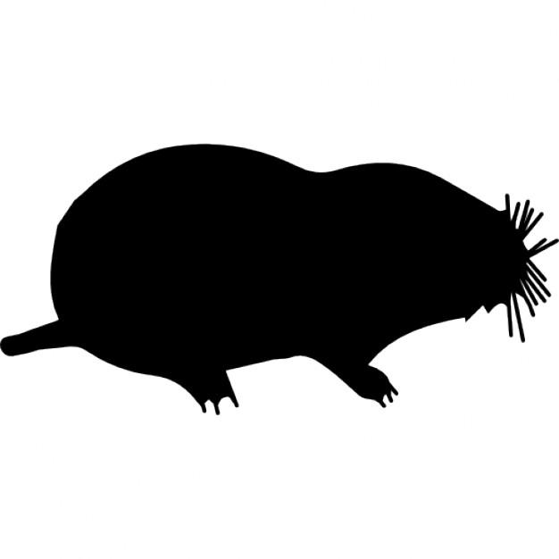 626x626 Free Mole Icon 190770 Download Mole Icon