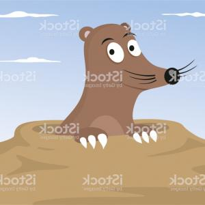300x300 Cartoon Mole Vector Illustration Gm Sohadacouri