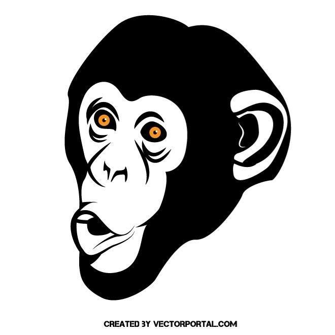 660x660 Monkey Face Vector Image Animal Vectors Monkey And