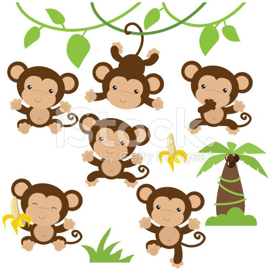 556x555 Cute Monkey Vector Illustration Cute Monkey