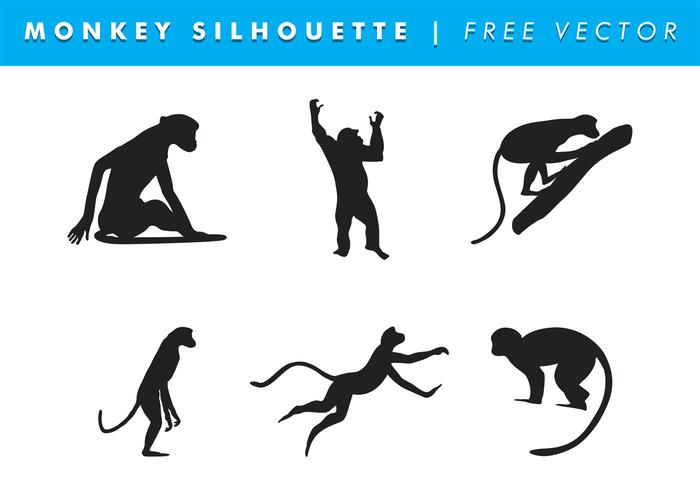 700x490 Monkey Free Vector Art
