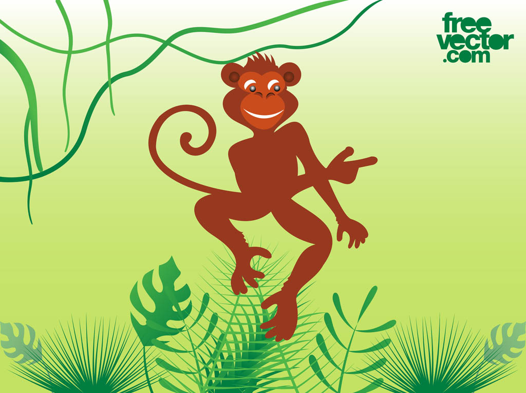 1024x765 Monkey Vector Vector Art Amp Graphics