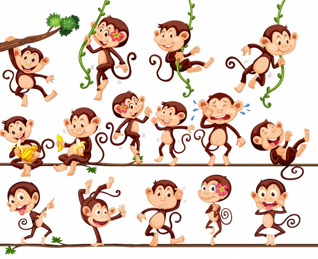 626x510 Monkey Vectors, Photos And Psd Files Free Download