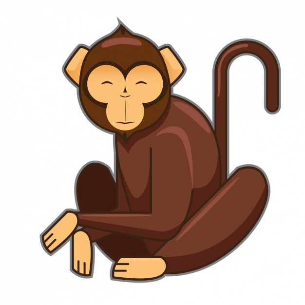 626x626 Coloured Monkey Design Vector Free Download