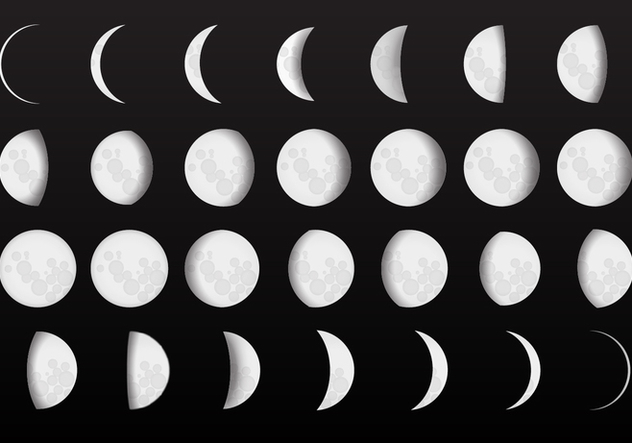 632x443 Complete Moon Phase Vectors Free Vector Download 359053 Cannypic
