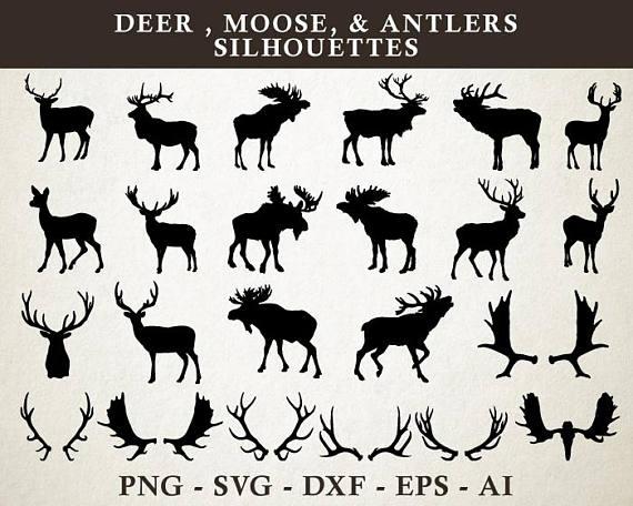 570x456 Deer Svg, Moose Svg, Antler Svg, Deer Moose Antlers Silhouette Cut