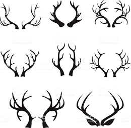 260x253 Download Deer Horn Vector Clipart Deer Moose Antler Deer