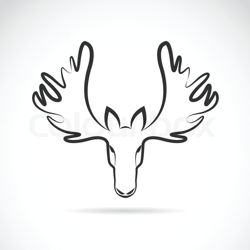 800x800 Vector Images Of Moose Deer Head On A White Background. Stock