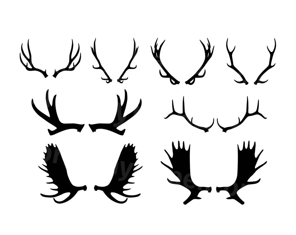 1000x794 Collection Of Moose Antler Silhouette Download Them And Try To Solve