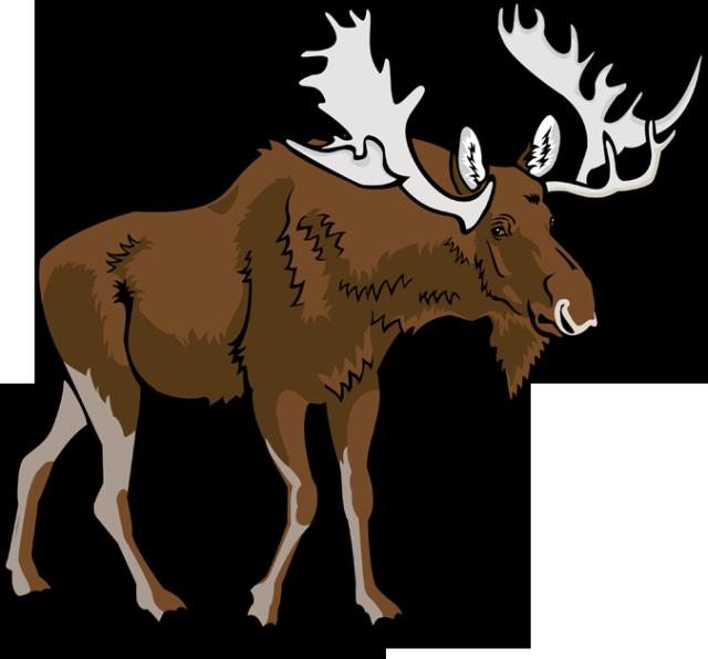 640x596 Moose Clip Art Vector Moose 6 Graphics Image 2