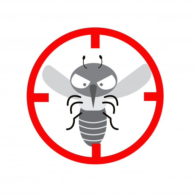 626x626 Mosquito Bite Vectors, Photos And Psd Files Free Download