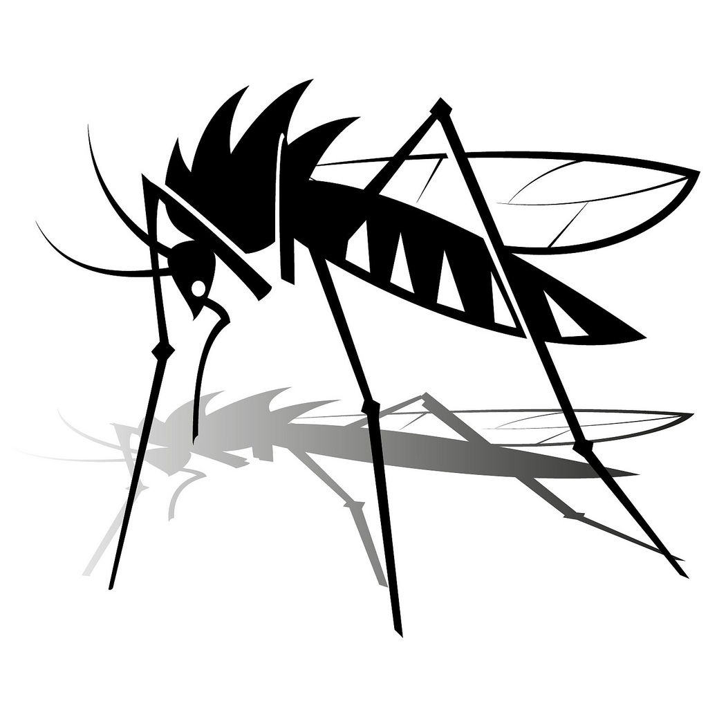1024x1024 Mosquito Vector Image If You Want To Use This Image Free
