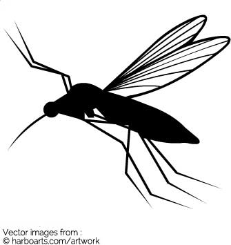 335x355 Download Mosquito