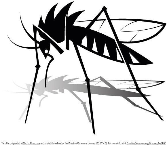 580x504 Free Mosquito Vector Graphics Free Vector In Encapsulated
