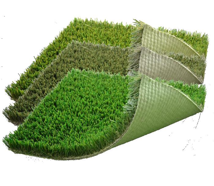 Moss Vector