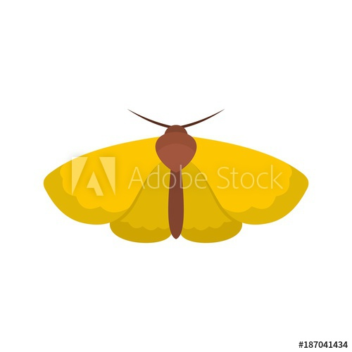 500x500 Moth Icon. Flat Illustration Of Moth Vector Icon Isolated On White
