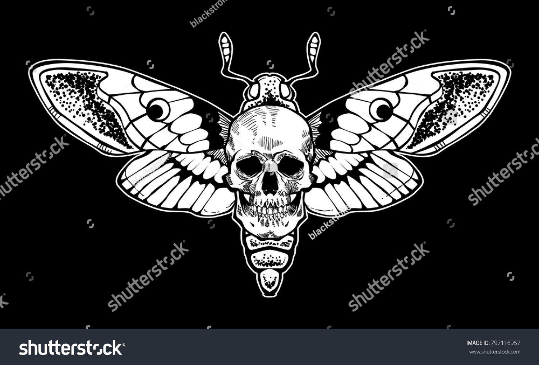 1500x1017 Skull Moth Vector File Butterfly In 2018 Skull