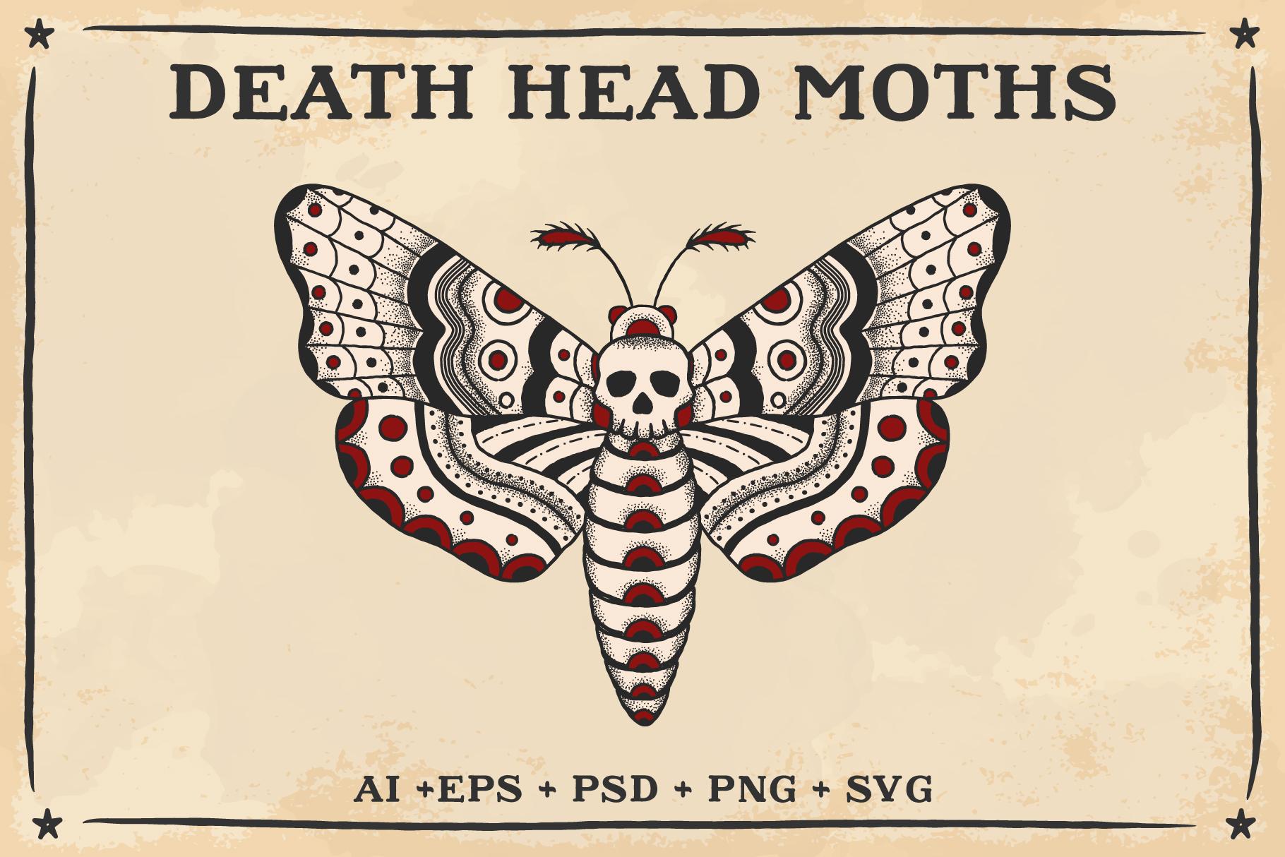 1820x1214 Death Head Moth Vector Design