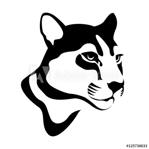 500x500 Adult Captive Mountain Lion Vector Illustration Style Flat