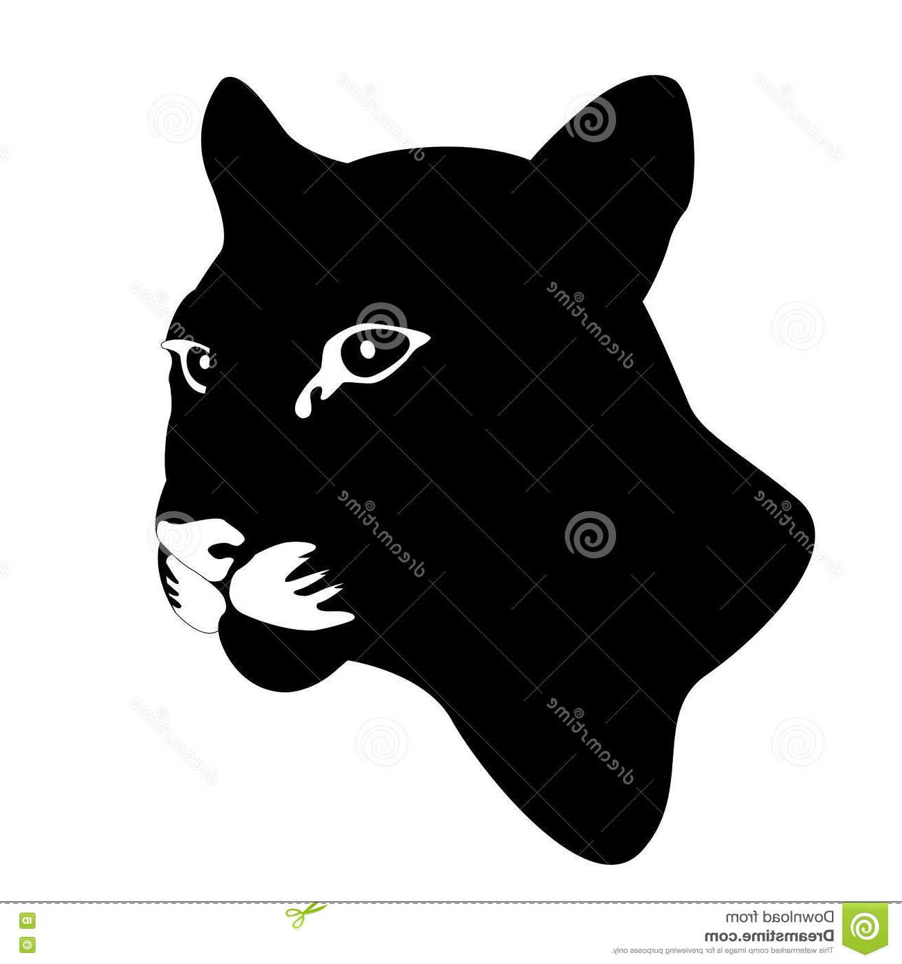 1300x1390 Top Cougar Mountain Lion Head Vector Illustration Photos