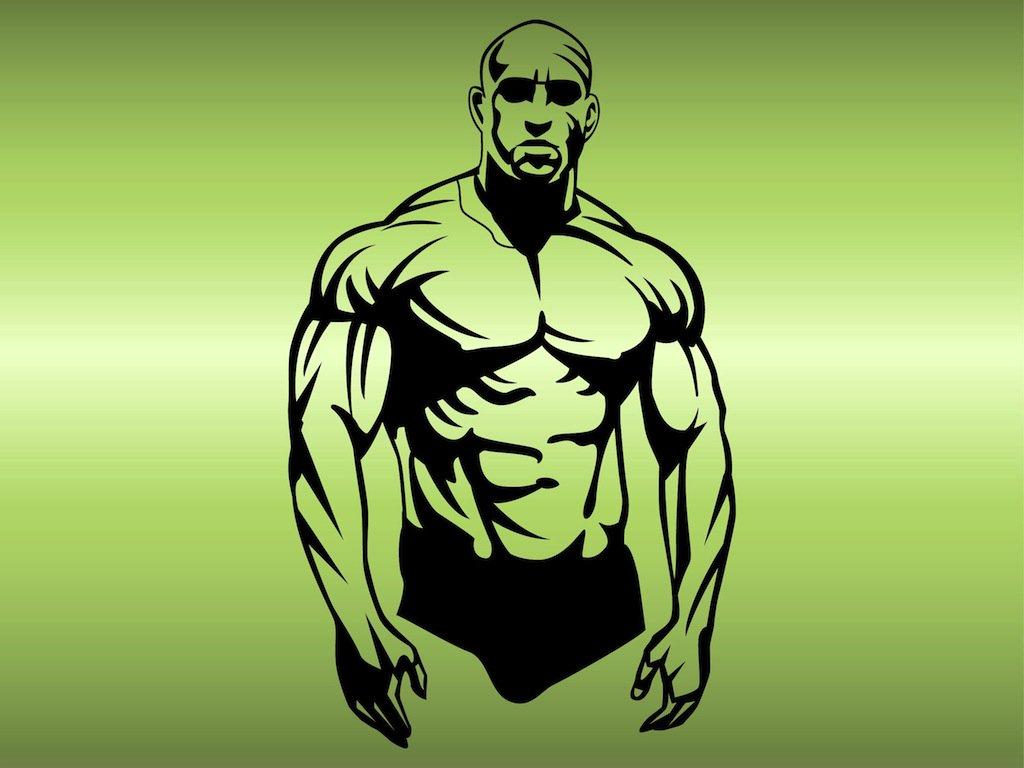 1024x768 Muscular Man Vector Vector Art Amp Graphics