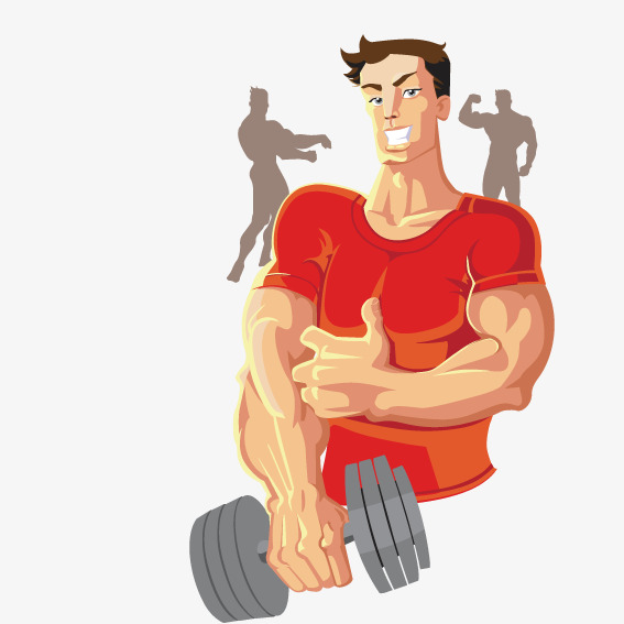 567x567 Build Muscle, Vector, Movement, Work Out Png And Vector For Free