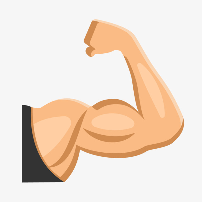 650x651 Fitness Muscle Arm, Fitness Vector, Fitness, Muscle Png And Vector