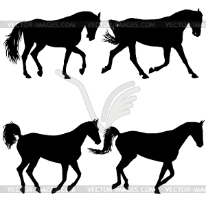 300x300 Set Animal Silhouette Of Black Mustang Horse