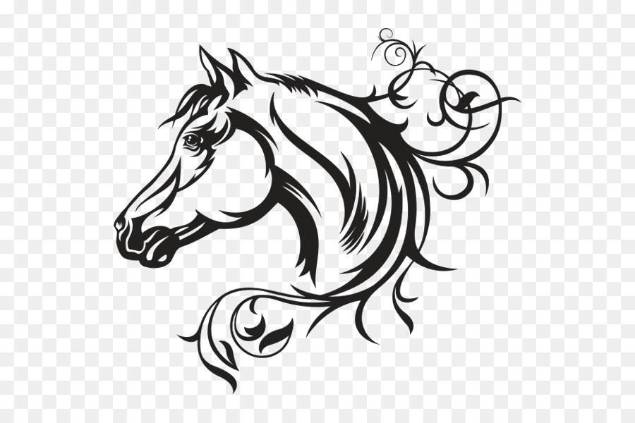 900x600 Decal American Quarter Horse Vector Graphics Illustration Horse