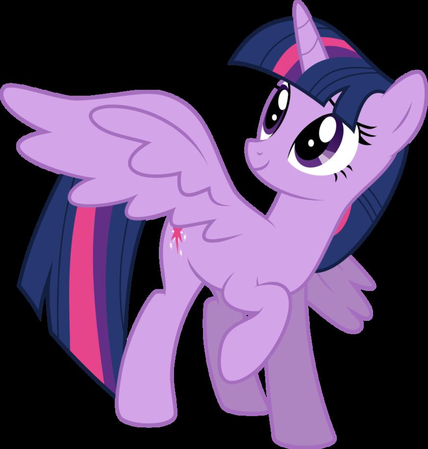 873x915 My Little Pony Vector