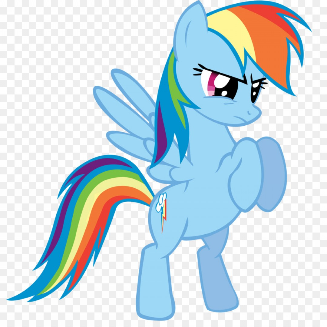 1080x1080 Png My Little Pony Rainbow Dash Tied Vector Shopatcloth