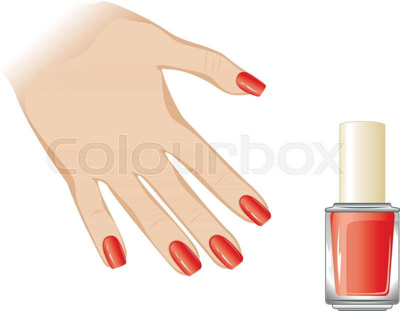 800x621 Female Fingers With Long Nails Dyed With Nail Polish. Stock