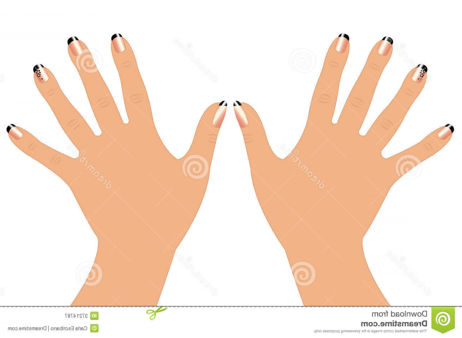 1560x1142 Royalty Free Stock Photography Woman Hands Nails Vector