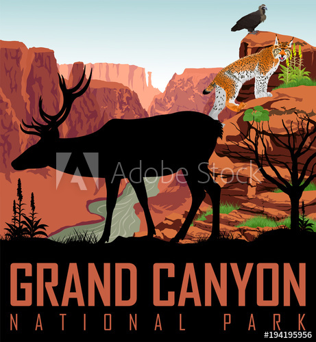 461x500 Vector Colorado River In Grand Canyon National Park With Deer