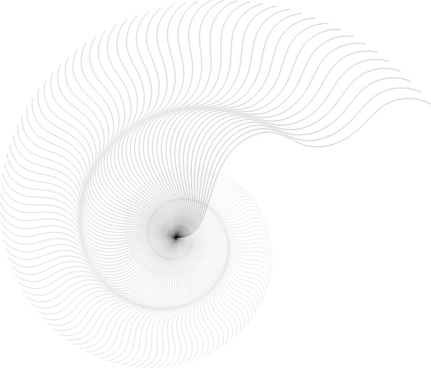 431x368 Nautilus Shell Free Vector Download (209 Free Vector) For