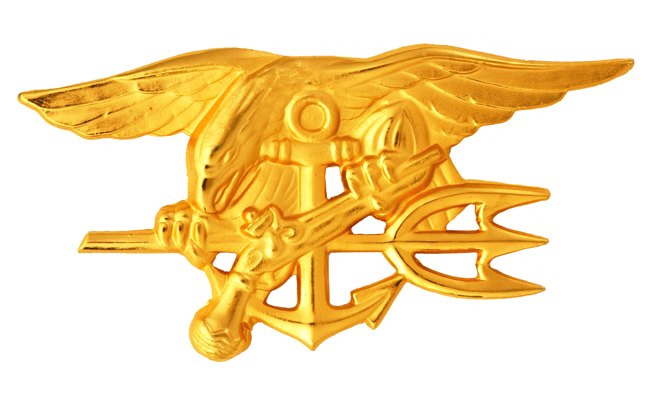 Navy Seal Logo Vector