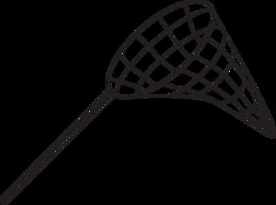 Net Vector