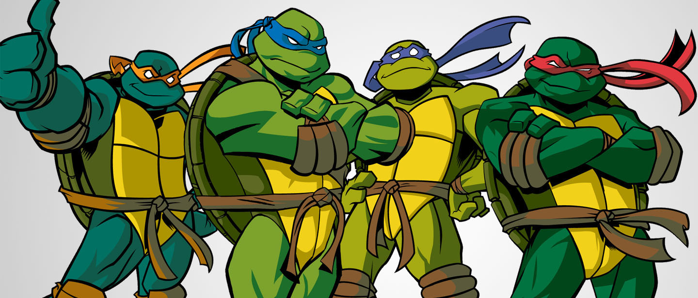 Ninja Turtles Vector