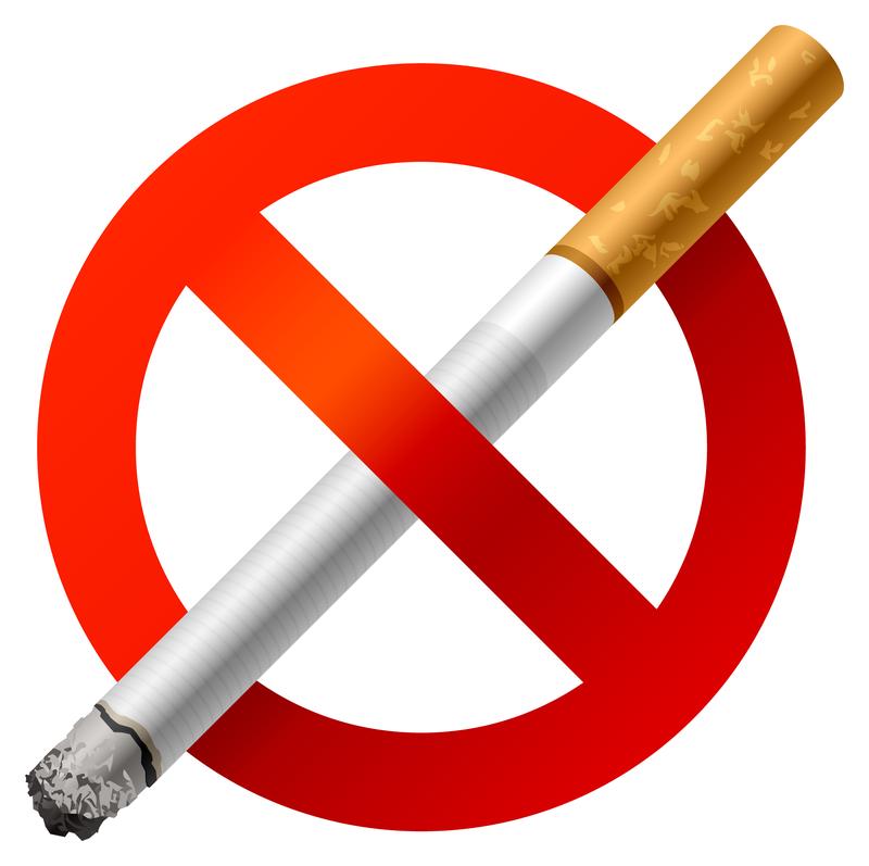 800x797 No Smoking Vector Material