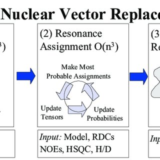 320x320 Nuclear Vector Replacement. Schematic Of The Nvr Algorithm For