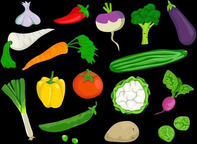 640x469 Nutrition Vector Food Technology ~ Frames ~ Illustrations ~ Hd