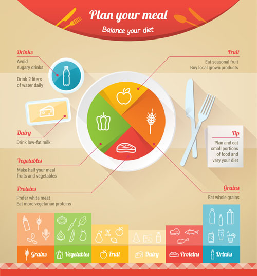 500x538 Nutrition Infographic Vector Material Free Download