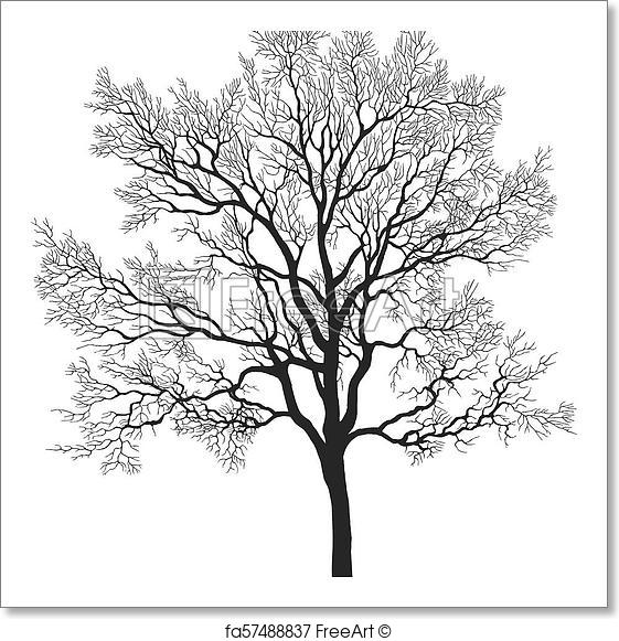 561x581 Free Art Print Of Oak Tree Vector Silhouette. Vector Oak Leafless