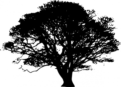 425x308 Free Download Of Oak Tree Vector Graphics And Illustrations