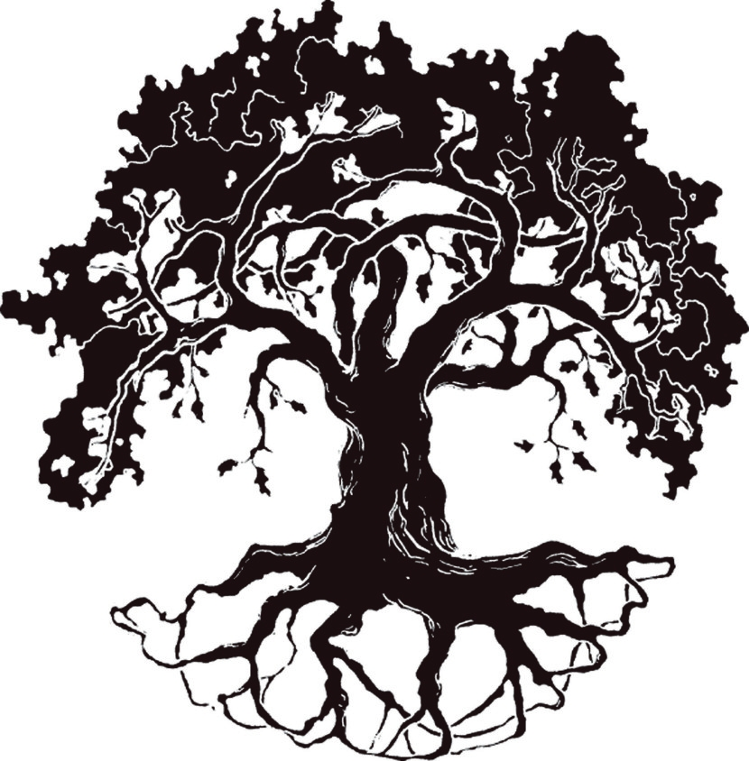 830x844 Oak Tree Black White Free Vector For Free Download About 6 Free